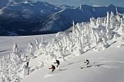 adventure skiing around kicking horse