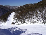 hotham down snake valley