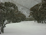 hotham on the way to blue ribbon
