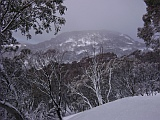 hotham winter picture