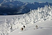 adventure skiing around kicking horse
